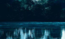 Hutan (Puisi)